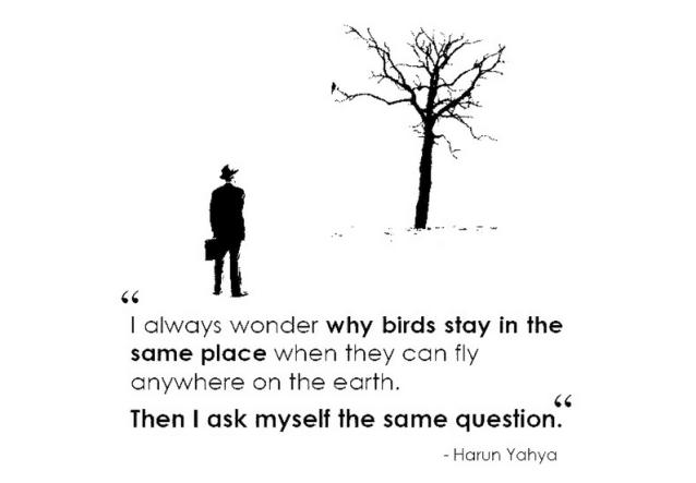 quote16
